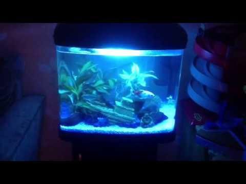 Interpet Fish Pod Glass Aquarium - Fish Pod 48 Litre