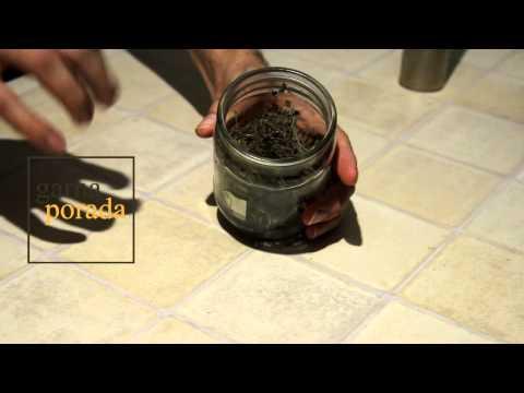 Тимьян: о применении и способе хранения