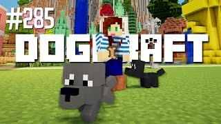 BAD GRAYSER! - DOGCRAFT (EP.285)