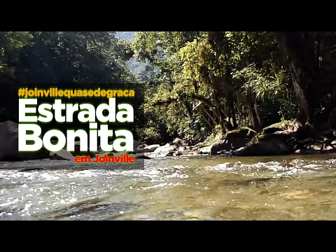 Joinville Quase de Graça - Estrada Bonita