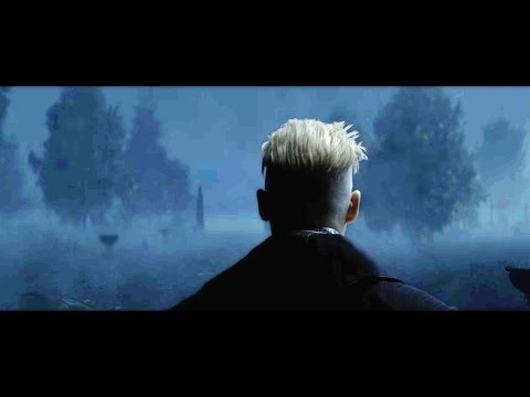 Fantastic Beasts - GRINDELWALD REVEAL Explained & Harry Potter Connections