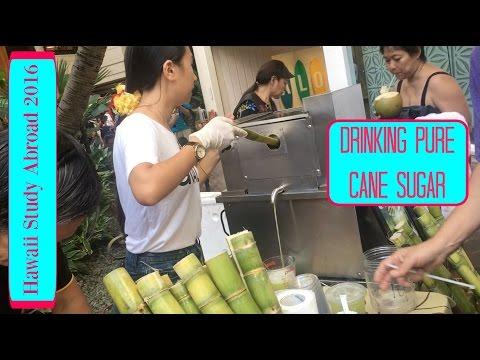 DRINKING PURE CANE SUGAR - Hawaii Study Abroad VLOG (May 26, 2016)