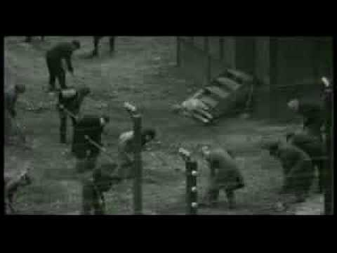 why schindlers list by steven spielberg is one of the most powerful movies of all time Hey i just got done watching schindler's list in my history class and i have to do a reaction essay for it one of the requirements is that we discuss the scenes with color the schindler's list color scenes.