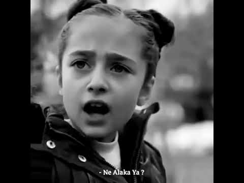 Alan Walker - K 391 & Emelie Hollow - Lily [Türkçe Çeviri] + [Rapunzel]