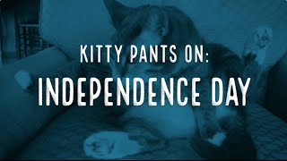 Kitty Pants On: Independence Day