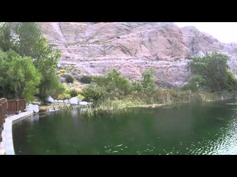 Whitewater Preserve in Palm Springs - Fish Pond