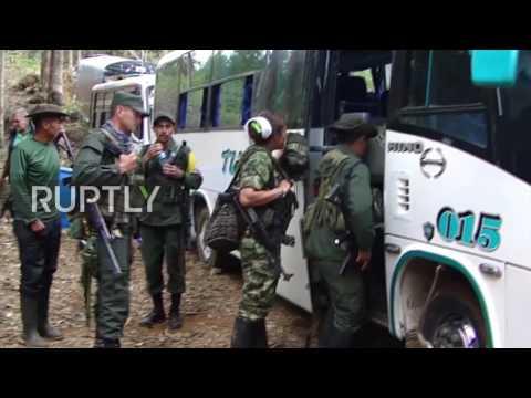 Colombia: FARC guerrillas begin demobilisation process