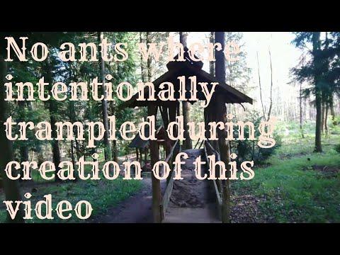 Barefoot path Meißner: family trip