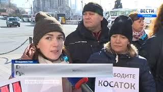 В Приморье прошел пикет в защиту белух и косаток, которых держат в бухте Средняя