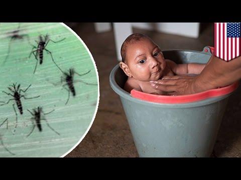 Poliklinika Harni - Određene kožne i tkivne lezije ukazuju na infekciju Zika virusom