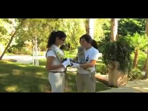 How to Perform a Girl Scout Flag Ceremony