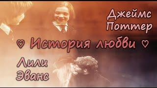♡ История любви Джеймса Поттера и Лили Эванс ♡