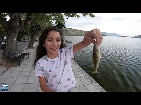 Yunanlılar Bu Balıkla Karın Doyuruyor / Perch Fishing In Kastoria Greece