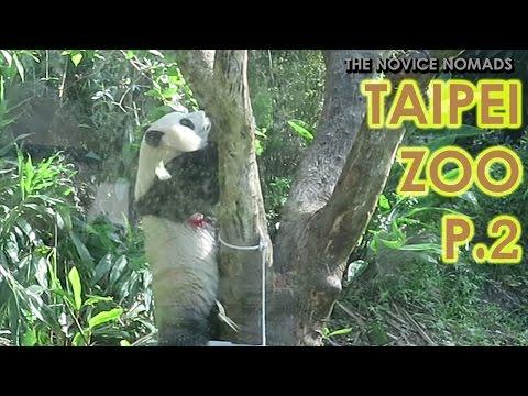 Taipei Zoo Part 2 | TAIWAN VLOG