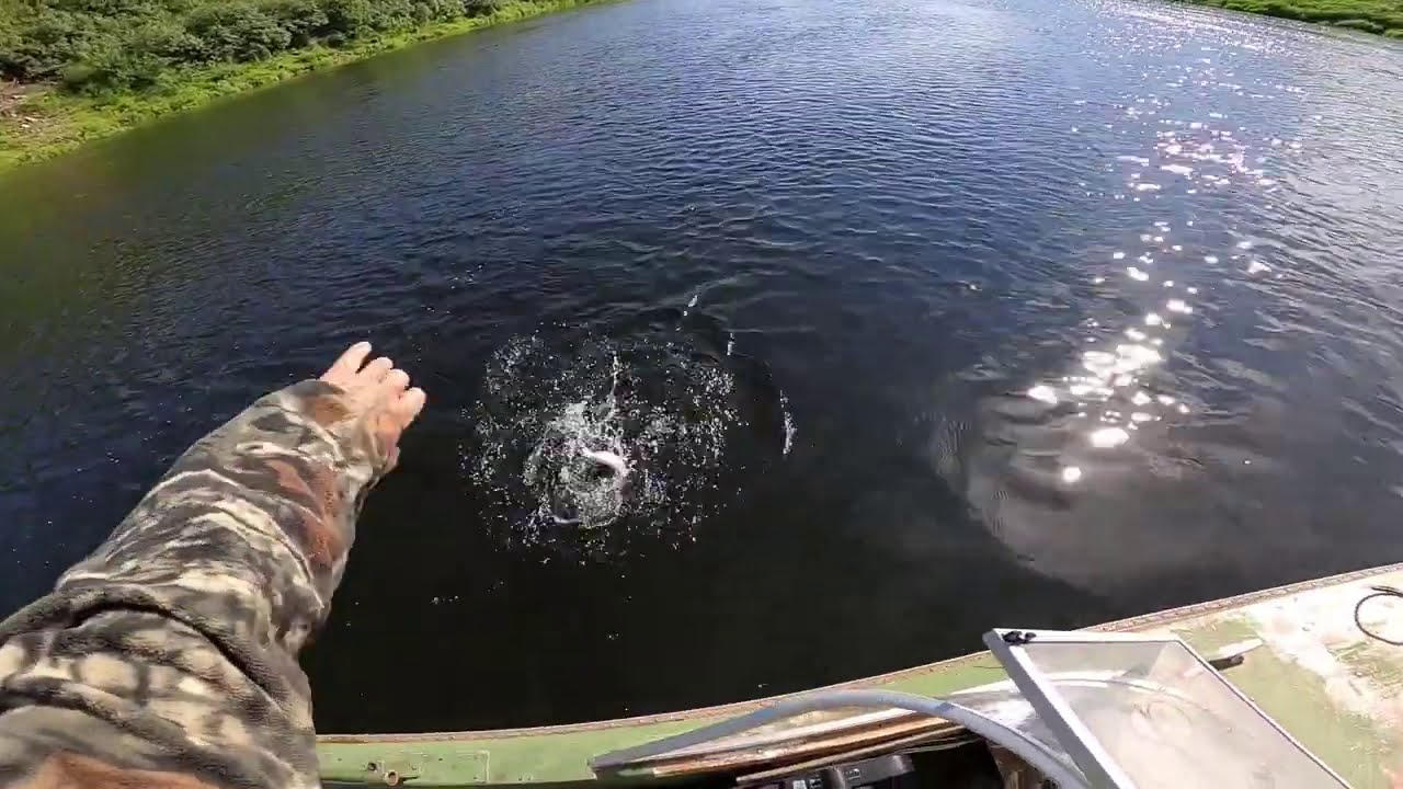 Рыбалка на пяти реках..(часть 1..)