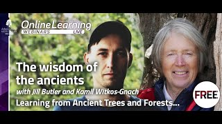 Webinar: The Wisdom of the Ancients - learning from ancient forests & trees