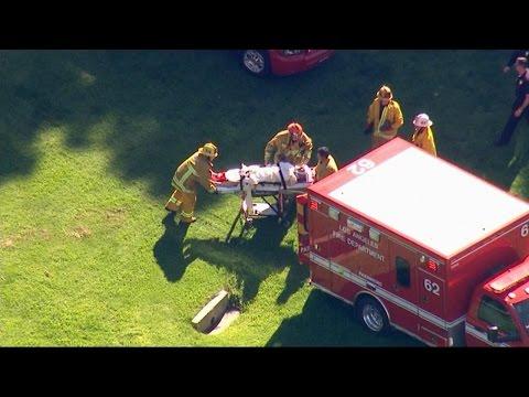 Harrison Ford Injured in California Small Plane Crash