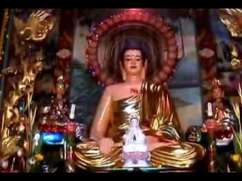 Điều phước đức 8: Chùa Vạn Phước B (01/08/2008) Thích Nhật Từ