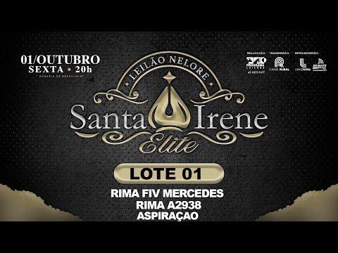 LOTE 1 RIMA A2938