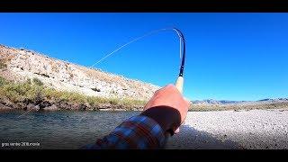 More Jackson Hole Fly Fishing!
