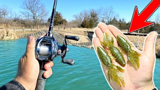 Catching EVERY BIG BASS in the Pond in ONE SPOT!!! (Spring Fishing)