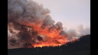 The National for Sunday, August 19, 2018 — B.C. wildfires and deadly flooding in India