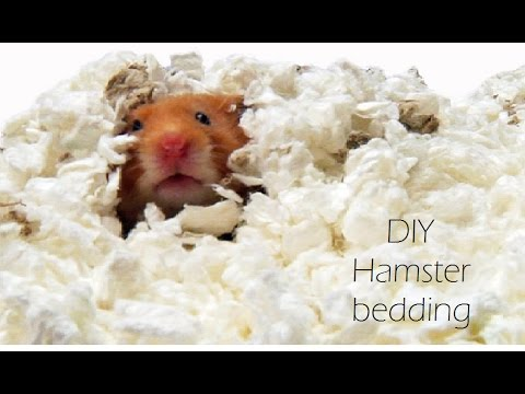 DIY Hamster bedding!