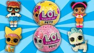 Eye Spy Pet Toy Surprise! LOL Surprise Help Animals at LOL Pet Shop