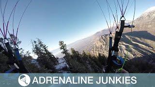 Speed-Flying Daredevil Trims Treetops