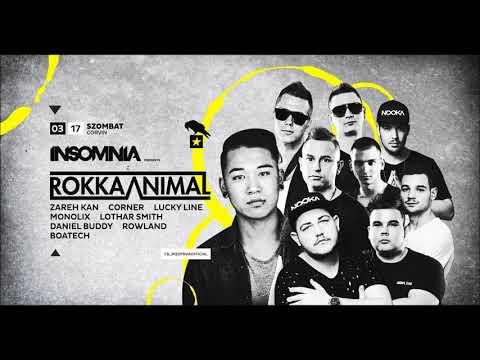 2018.03.17. - Insomnia w Rokka Animal X...