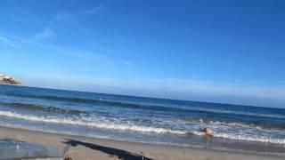 Korsika 4- Dolce Vita, Calvi