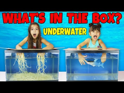 WHAT'S IN THE BOX CHALLENGE - UNDERWATER!