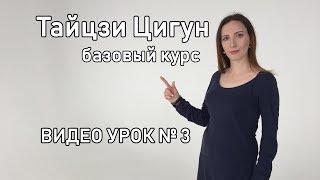Тайцзи Цигун  Гимнастика здоровья и долголетия, видео урок №3  Упражнения Птица и Язык пламени