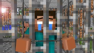 Steve Life 11  - Minecraft animation