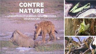 Contre Nature - l'exception et la règle / les inventions de la nature