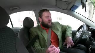 """Das Katzentaxi: Kater """"Tea"""" ist der Boss im Auto"""
