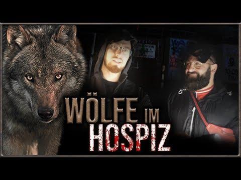 Wir besuchen ein Militärhospital und finden Wölfe