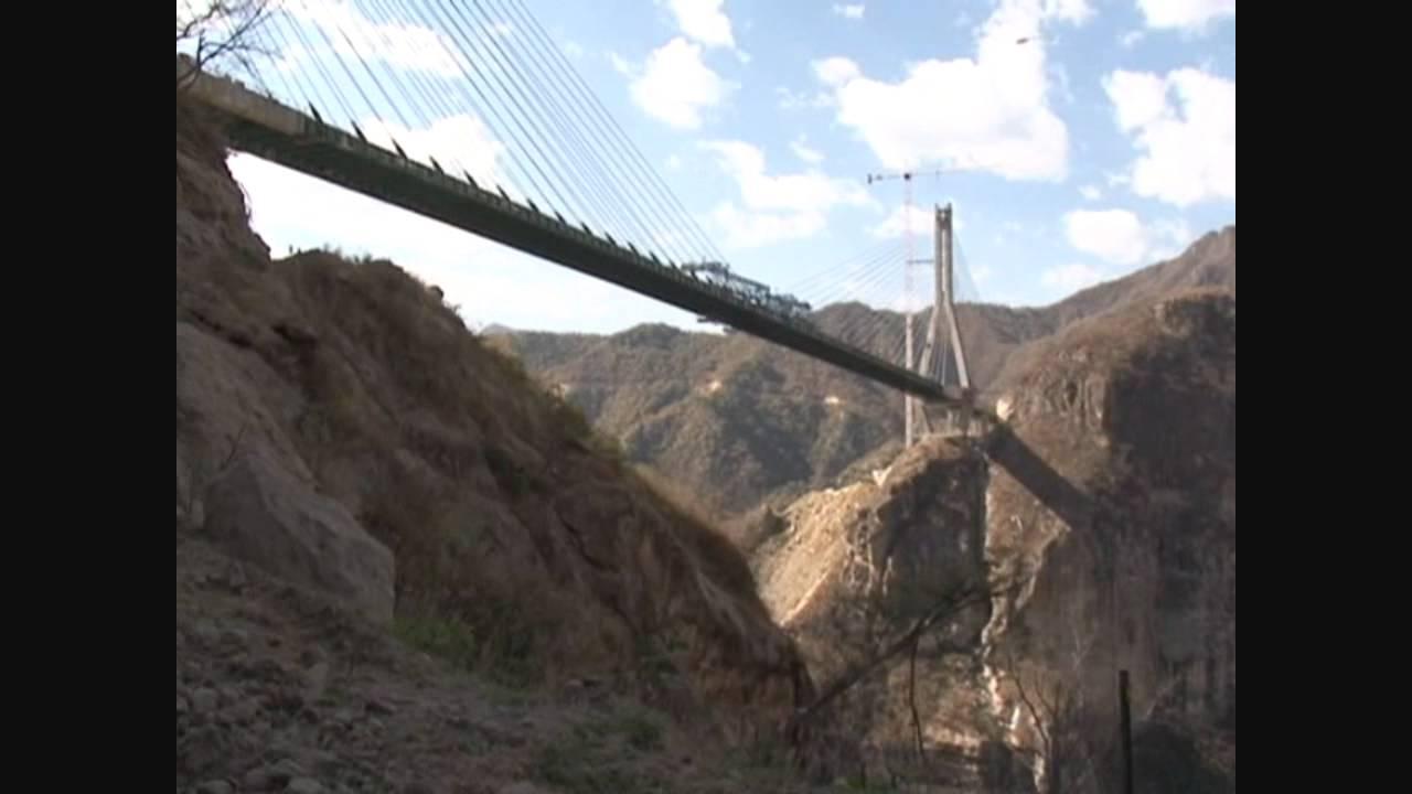 Trezor bridge not working