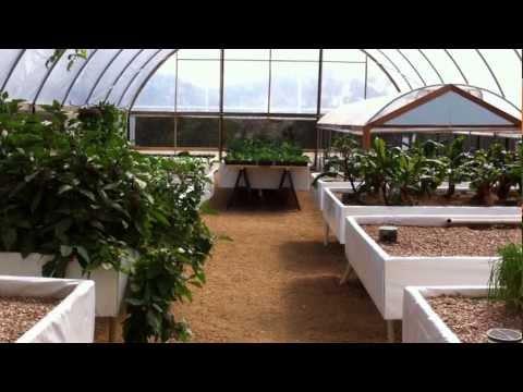 Aquaponic Farm, HannaLeigh farm home of Austin Aquaponics, Rob Nash