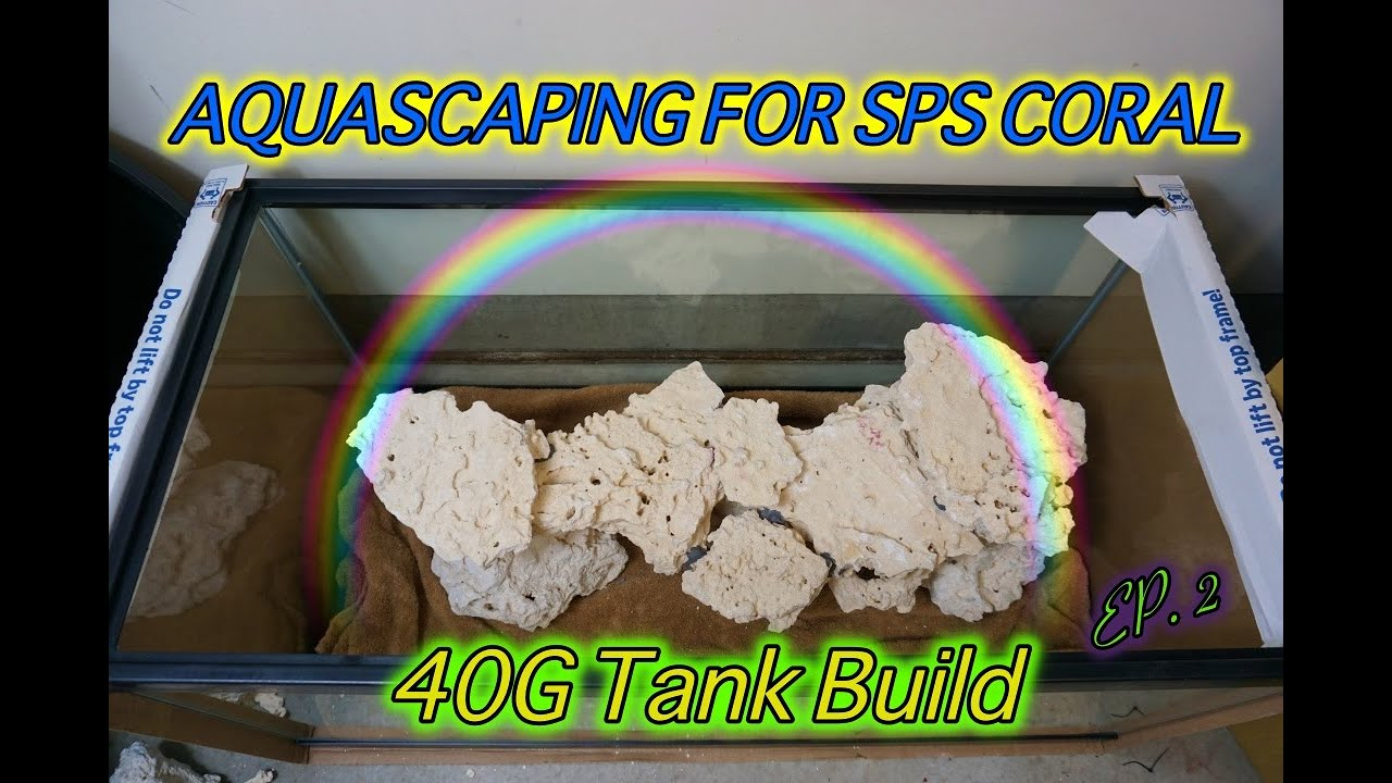 Aquascape For SPS Coral - 40G Breeder Reef Tank Build (Ep ...