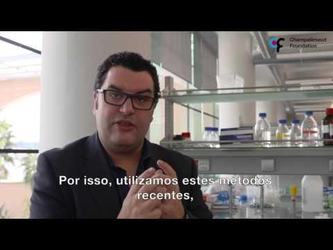 Rui Costa, Principal Investigator at Champalimaud Research