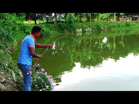 Catla Fishing By Simple Fishing Bait And Fish Hooks