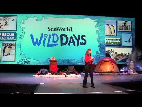 Julie Scardina Penguin Talk Wild Day SeaWorld Orlando 2015