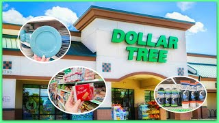 SHOP WITH ME @ DOLLAR TREE (I almost went into the storage room)