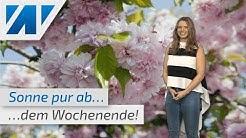 Die Trockenheit macht Deutschland schon wieder zu schaffen! (Mod.: Adrienne Jeske)