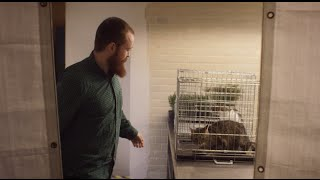 Europäisches Restaurant tischt Hunde- und Katzenfleisch auf!