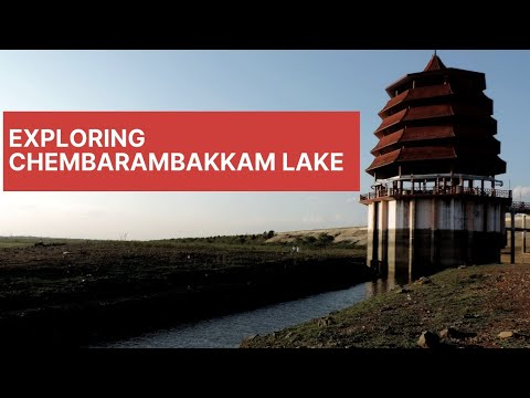 Chembarambakkam Lake Chennai | Ron Vlogs 2nd Vlog | This Is how Lake Looks  like Now