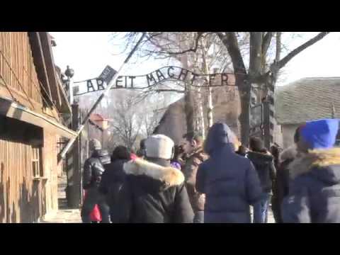 """Auschwitz : """"Quand j'étais au camp, je n'ai jamais pleuré"""""""