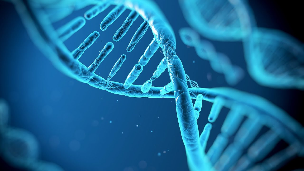 an analysis of genetic testing in determining symptoms and results of a genetic disorder