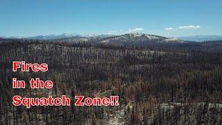 Fire!! How does it affect Bigfoot/Sasquatch? Lets Chat Live!!!